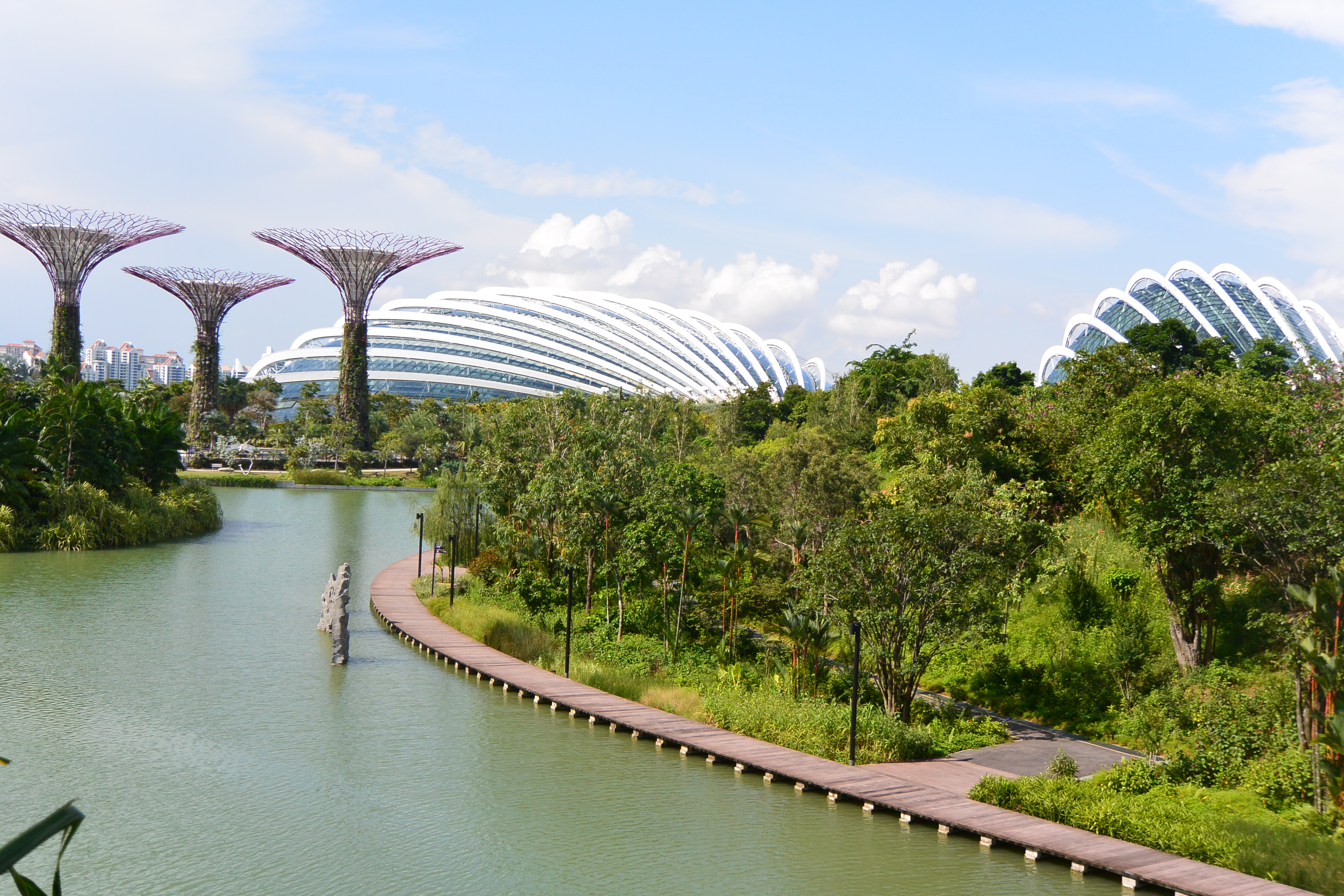 we were looking for ways to see as much as we could in singapore without having to sell any organs and we found tickets on groupon to the gardens by the