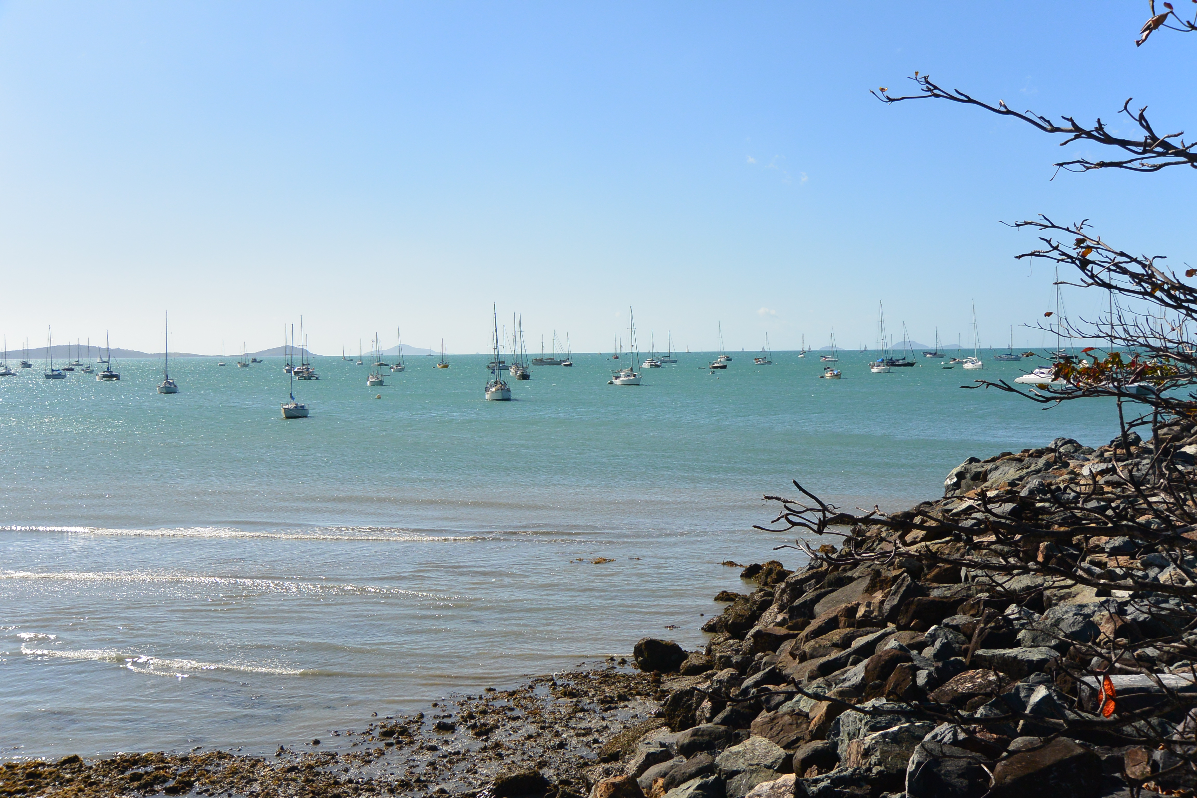 airlie beach how to get there